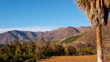 Valle-de-Limarí