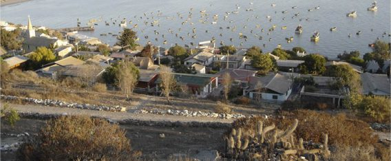 Tongoy es una de las mejores playas en Chile para disfrutar de la tranquilidad