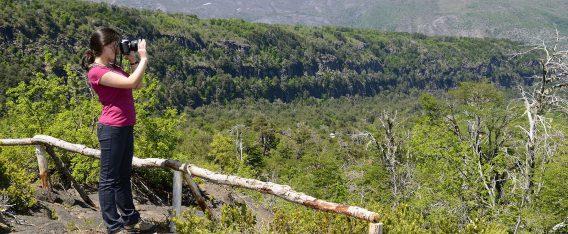 Valle Las Trancas: 6 mejores lugares para ver el otoño en Chile