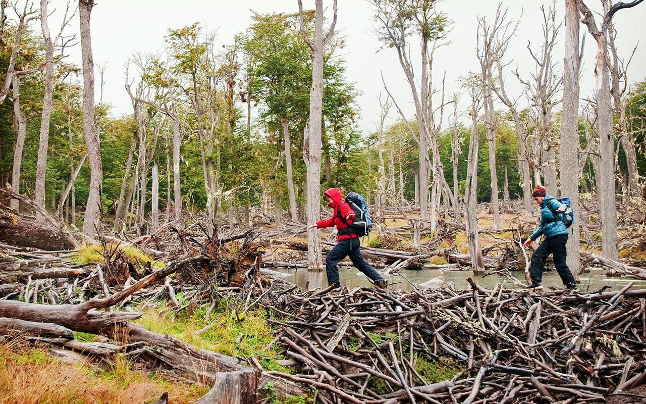 Trekking en Tierra del Fuego para celebrar el año nuevo en Chile