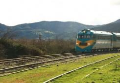 buscarril_tren