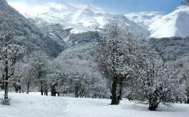 valle_las_trancas_invierno