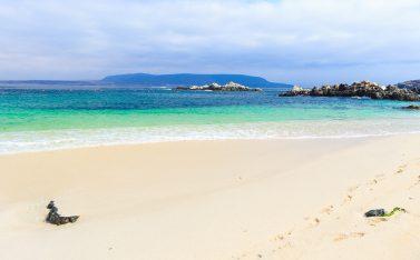 Bajía Inglesa, una de las mejores playas de Chile
