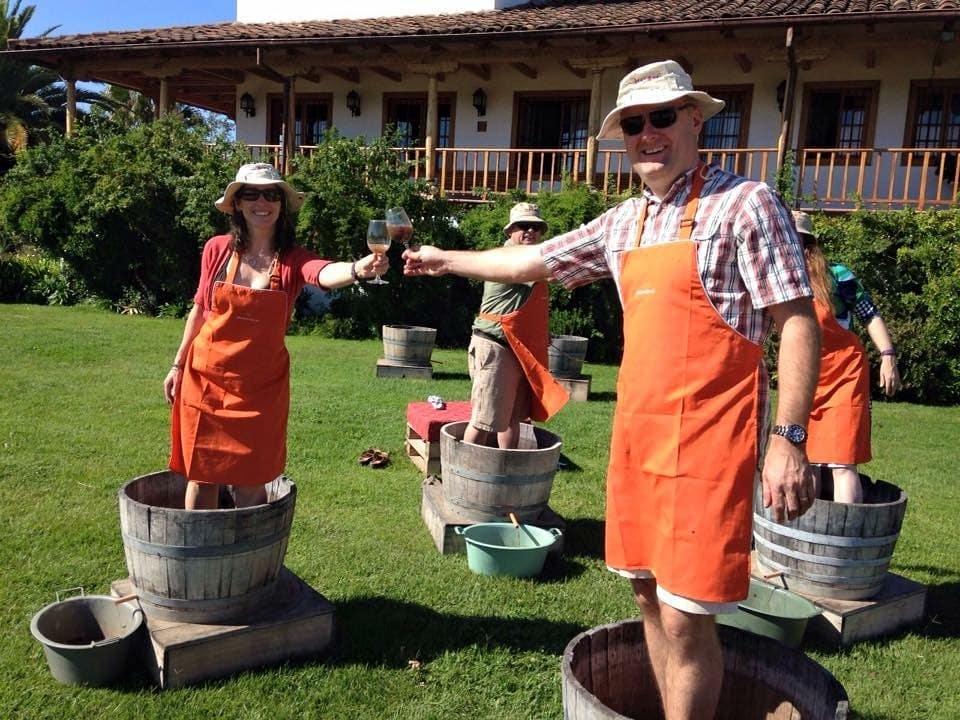 La viña Montgrass es una de las viñas chilenas donde puedes participar de diversas actividades ligadas a la producción vitivinícola.