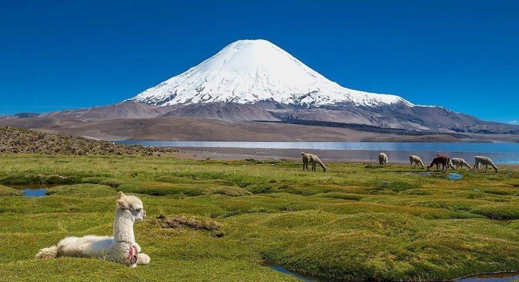 El Lago Chungará es uno de los lagos chilenos para ir de vacaciones.