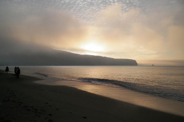 Playa Lenga, un paseo tranquilo para hacer senderismo con perros.