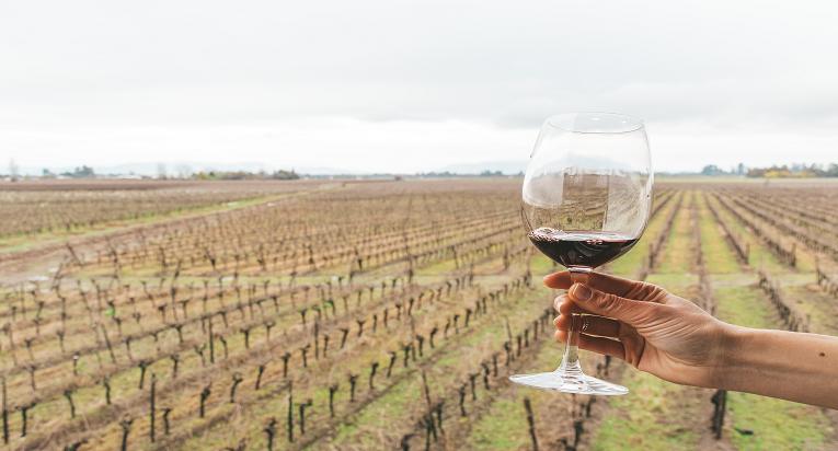 Las tradiciones y viñedos del Maule te esperan todo el año.