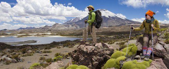 Las 7 mejores trekking en Chile: Uno de ellos es el Parque Nacional Lauca