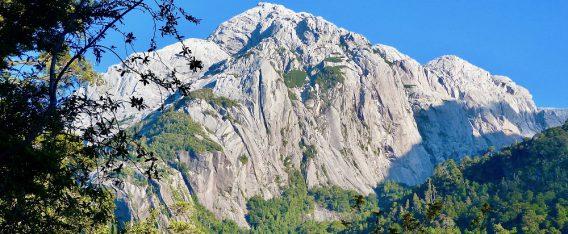 Parque Tagua Tagia es uno de los 7 mejores trekking en Chile