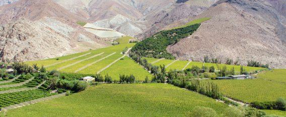 Valle de Elqui, uno de los mejores lugares de camping en Chile