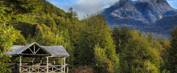 Parque Pumalín es de los mejores lugares de camping en Chile