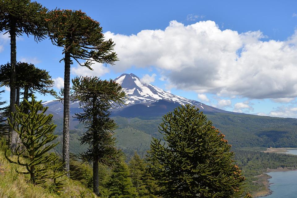 7 días en La Araucanía para visitar el Parque Nacional Conguillío