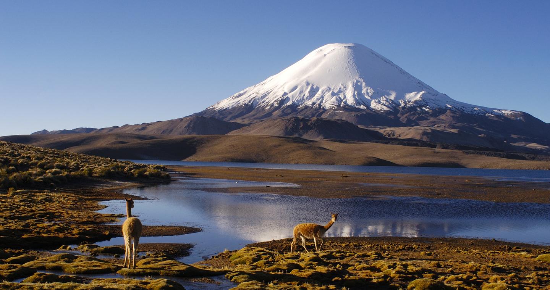 Imperdibles de Arica y Parinacota es visitar el lago Chungará