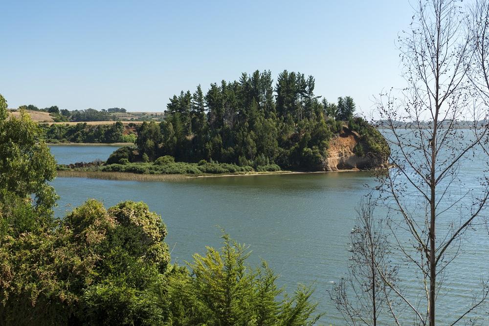 Etnoturismo en La Araucanía y Lago Budi