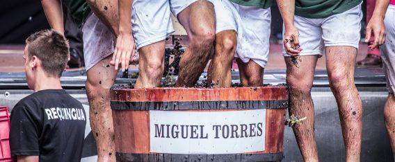 Curicó es una de las fiestas de la vendimia en Chile