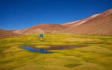 Qué hacer en Atacama para visitar Ojos del Salado