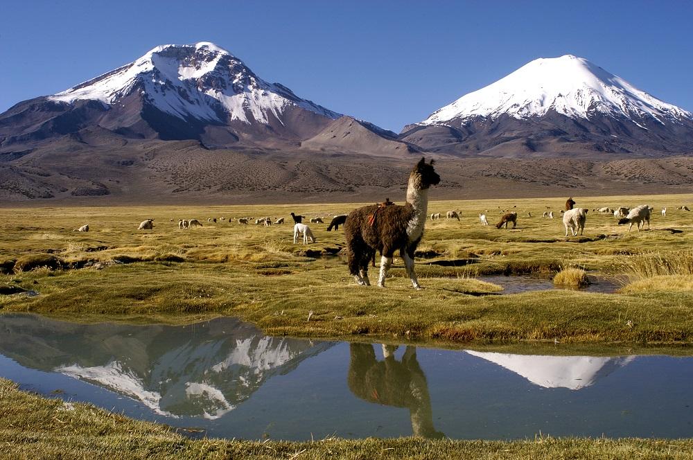 3 días en Arica y en el altiplano chileno