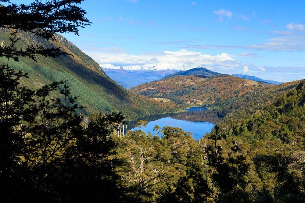 Vista desde las alturas al Parque Nacional Huerquehue parte de la Reserva de la Biósfera Araucarias
