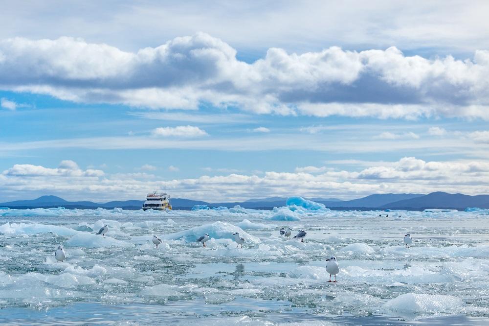 Campos de hielo en la Reserva de la Biósfera Laguna San Rafael
