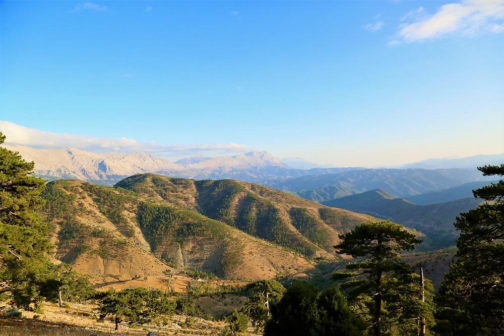 paisajes y relajo en la región