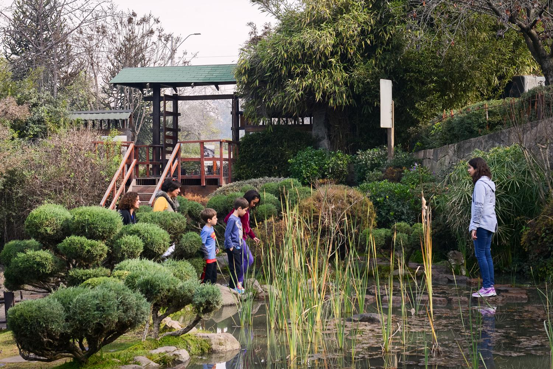 Imagen de unos niños disfrutando del jardín japones del Parque Metropolitano