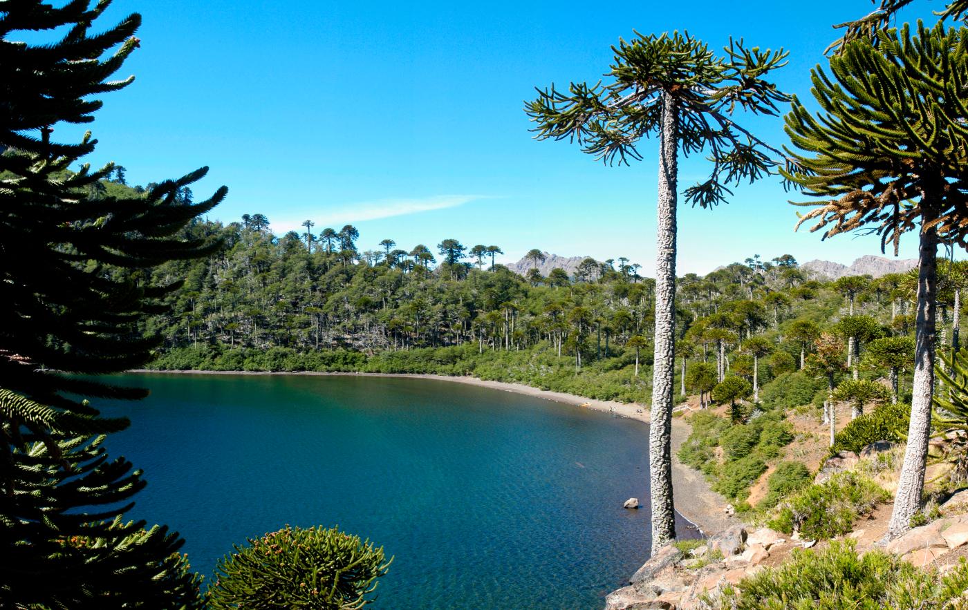 Imagen de laguna Mula en la Región del Biobío