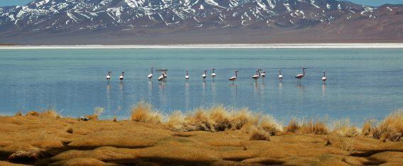 Imagen de la Laguna Santa Rosa