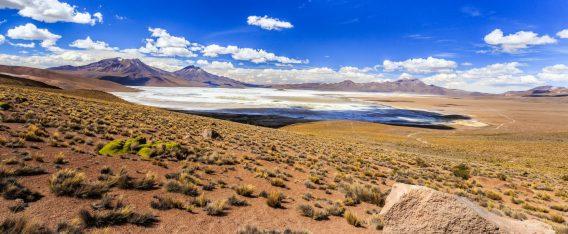 Imagen del Monumento Natural de Surire