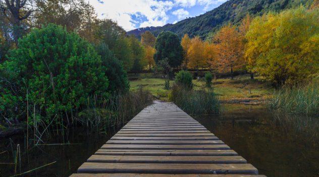 Imagen del Parque Nacional Huerquehue