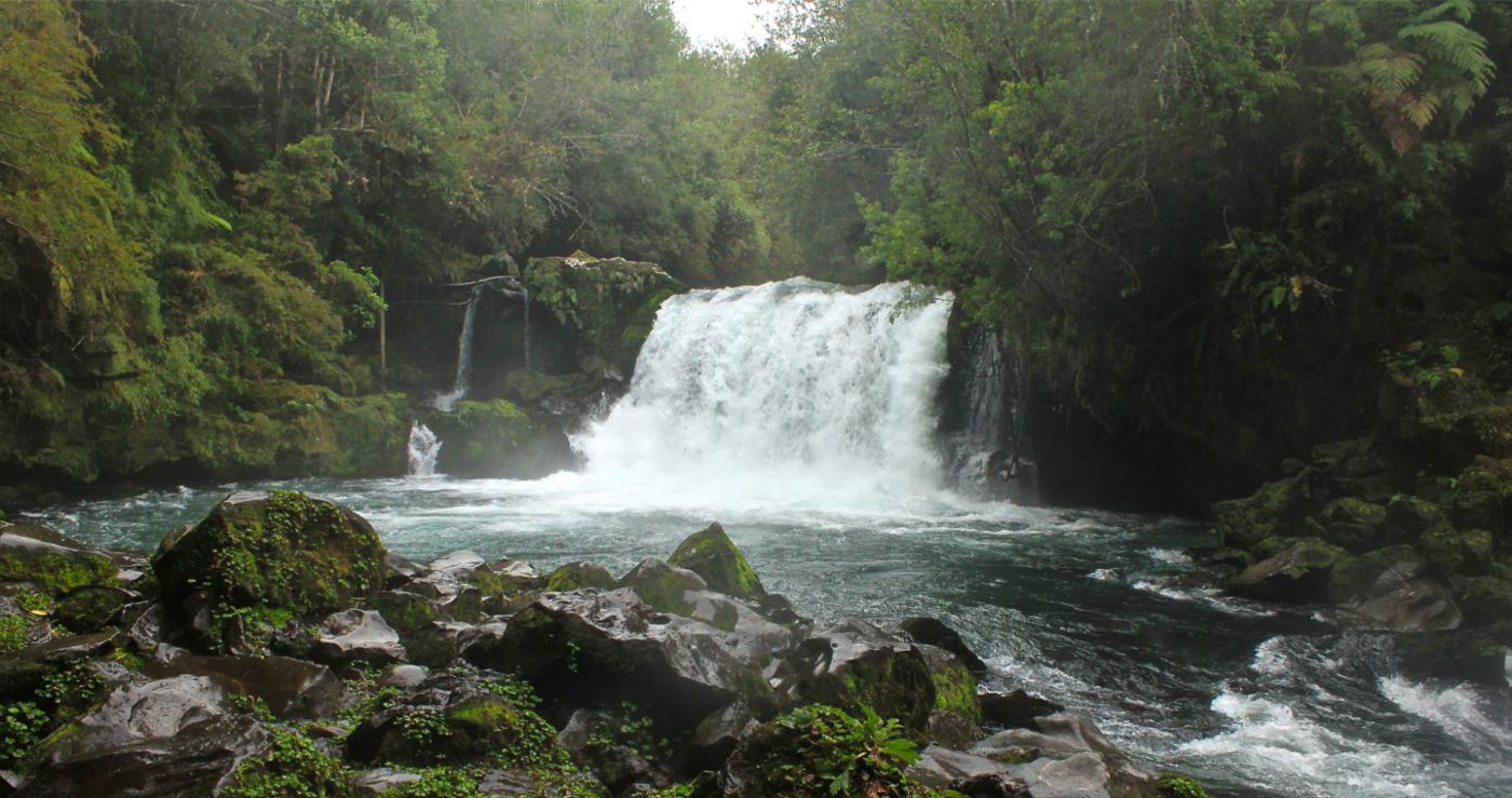 Imagen de una cascada en el parque pumalín