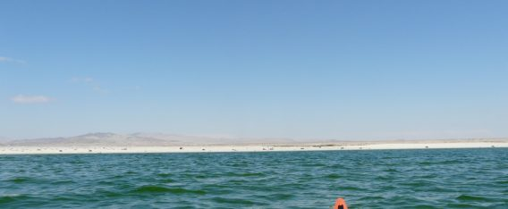 Imagen de la Playa Las Machas