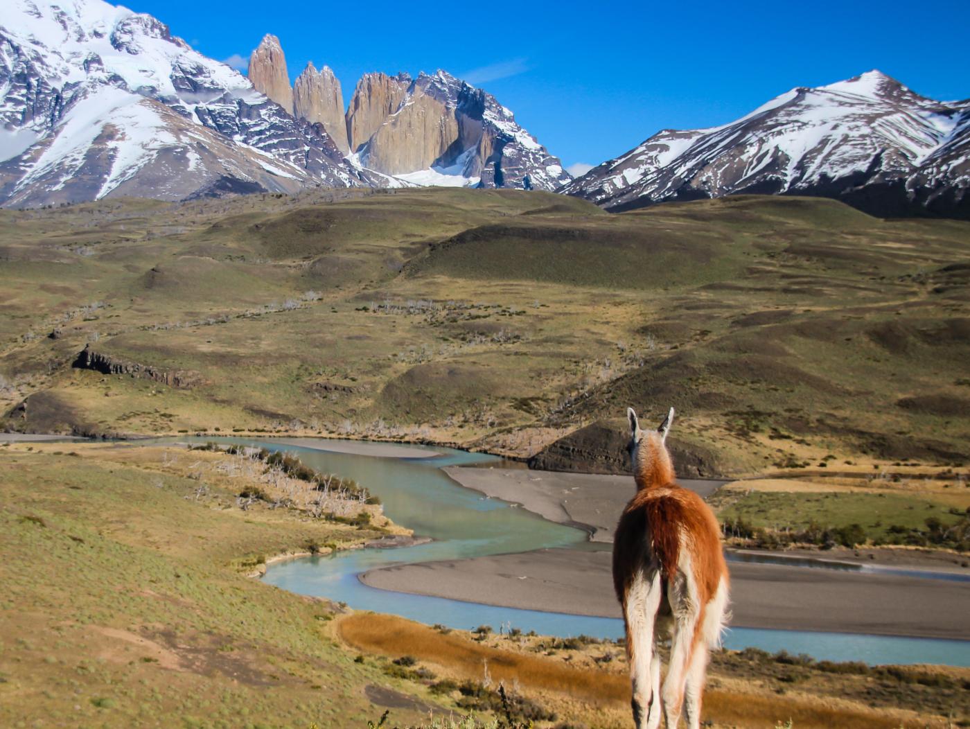 Imagen de las Torres del Paine