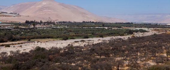 Imagen del Vale de Azapa