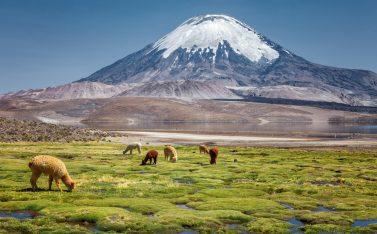 Imagen de un volcan