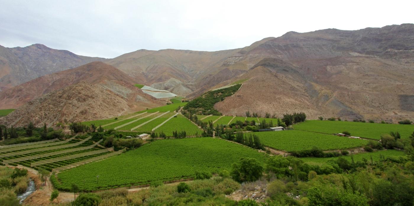 Imagen del Valle del Elqui en el norte de Chile