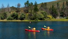 Imagen del Lago Lanalhue