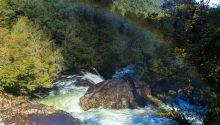 Parque-Nacional-Alerce-Andino