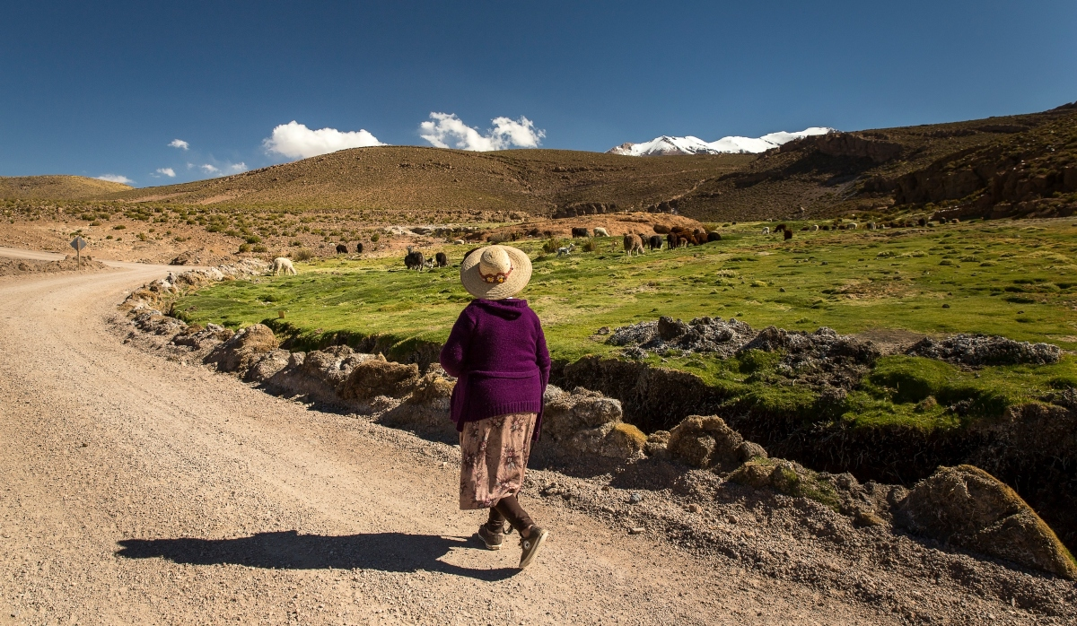 Imagen de una mujer aymara caminando en el altiplano