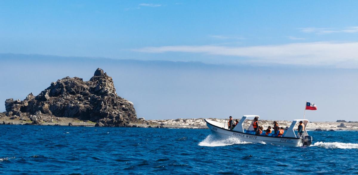 Imagen de la Isla Pinguinos de Humboldt