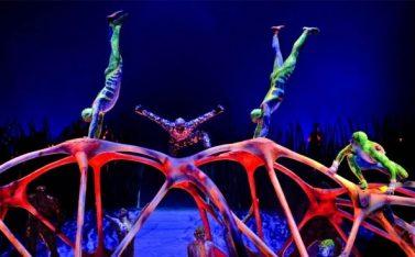 Imagen de un circo