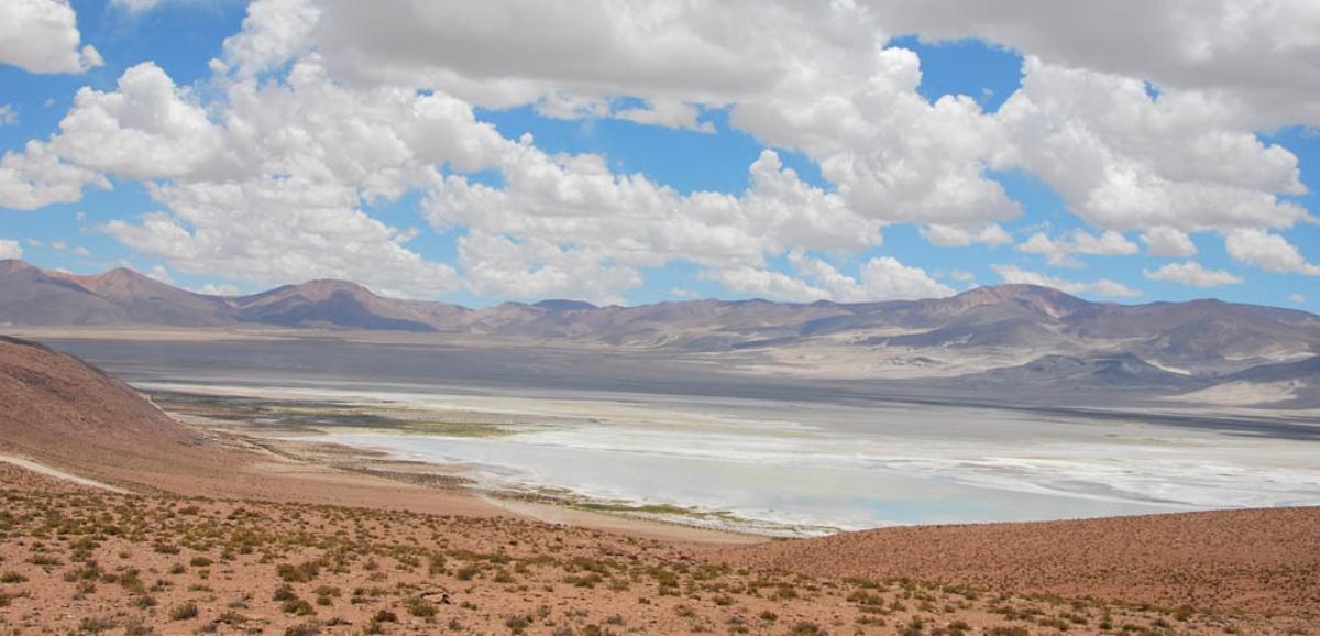 Salares de Chile: Parque Nacional Salar de Huasco en un hermoso día soleado