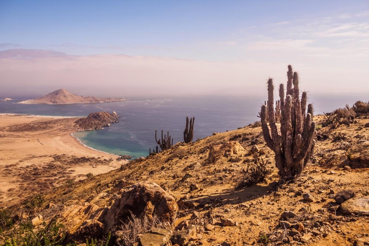 Imagen del Parque Nacional Pan de Azúcar desde un mirador