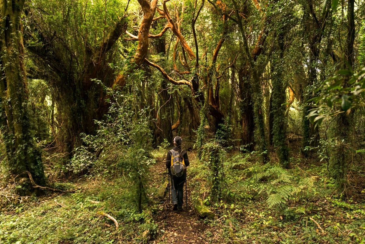 Una mujer realizando trekking en Isla Mocha