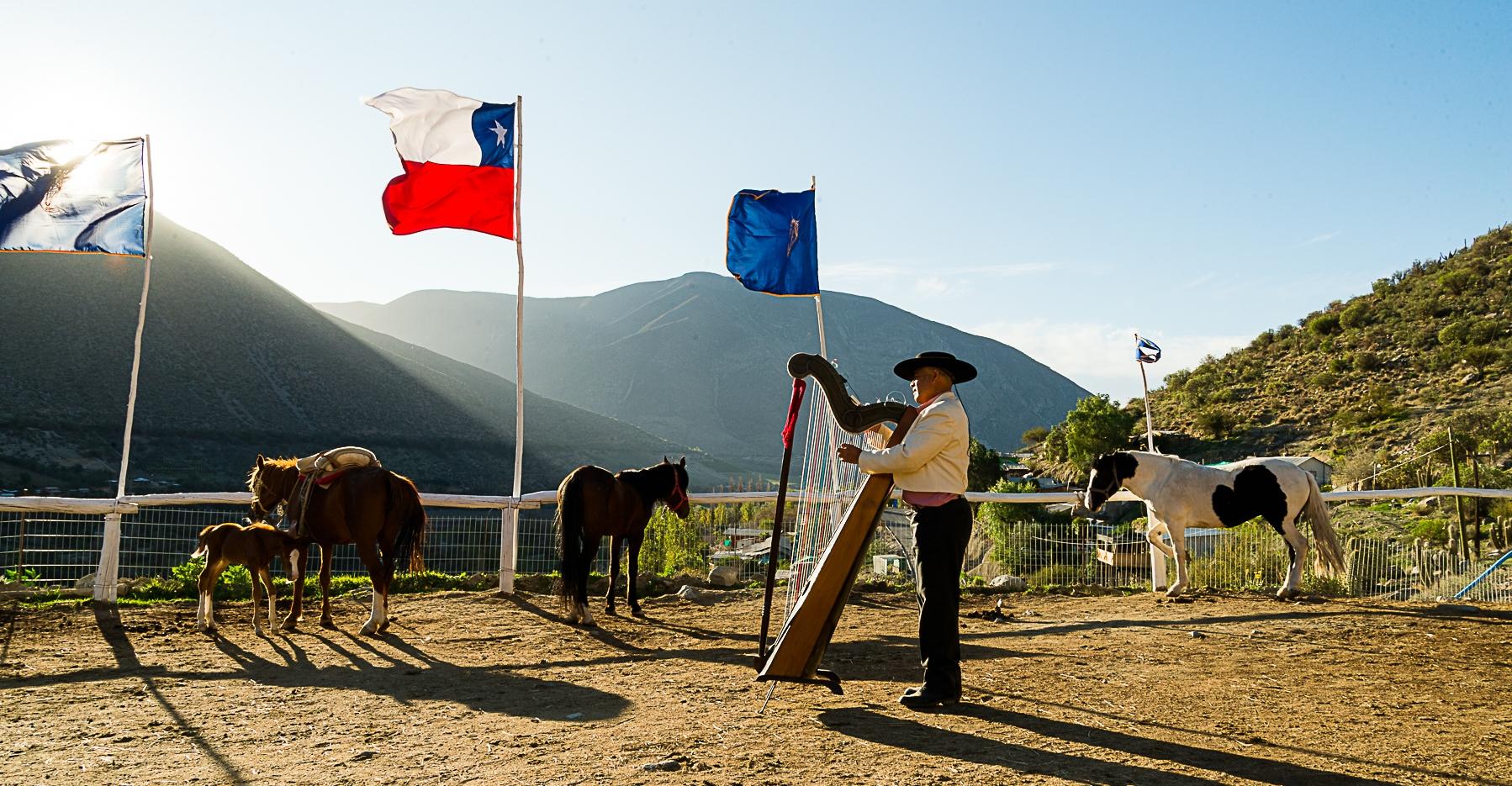 Imagen de un hombre tocando arpa para los caballos en la amansa Cuna del Sol