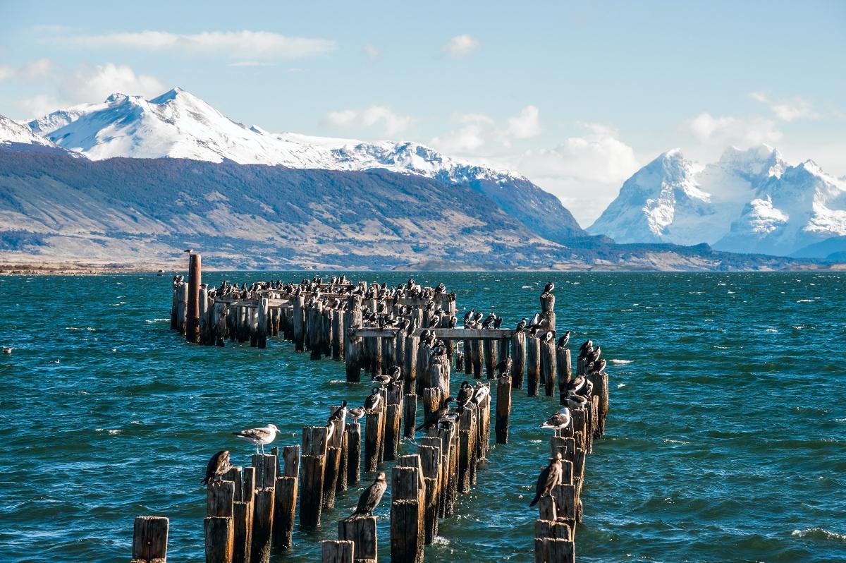 Imagen de Puerto Natales donde se aprecian los diques y la imponente cordillera