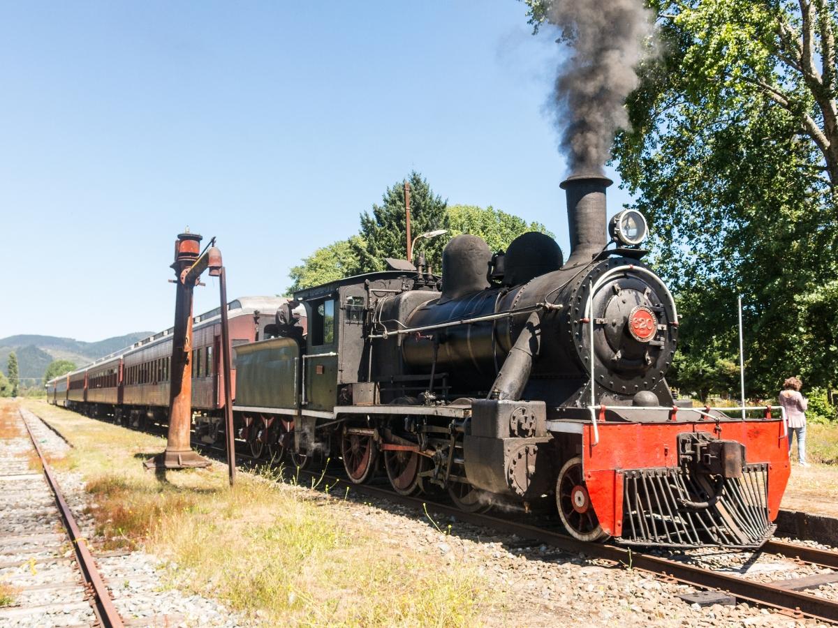 Imagen del Tren El Valdiviano