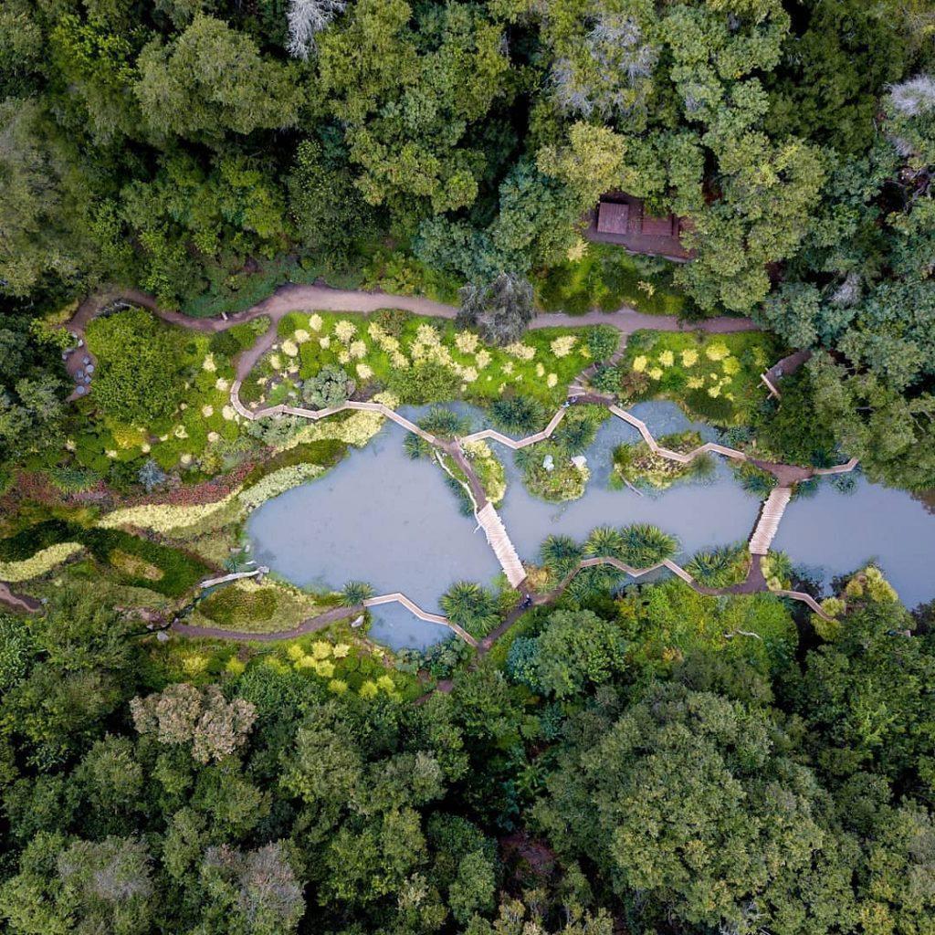 Aviario- imagen panorámica del parque Tricao