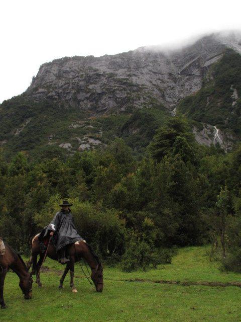 Bosques de Chile- localidad de Cochamó