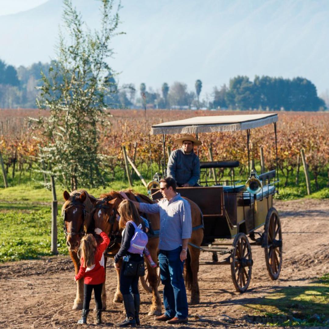 Fiesta de la vendimia: paseo en carruaje