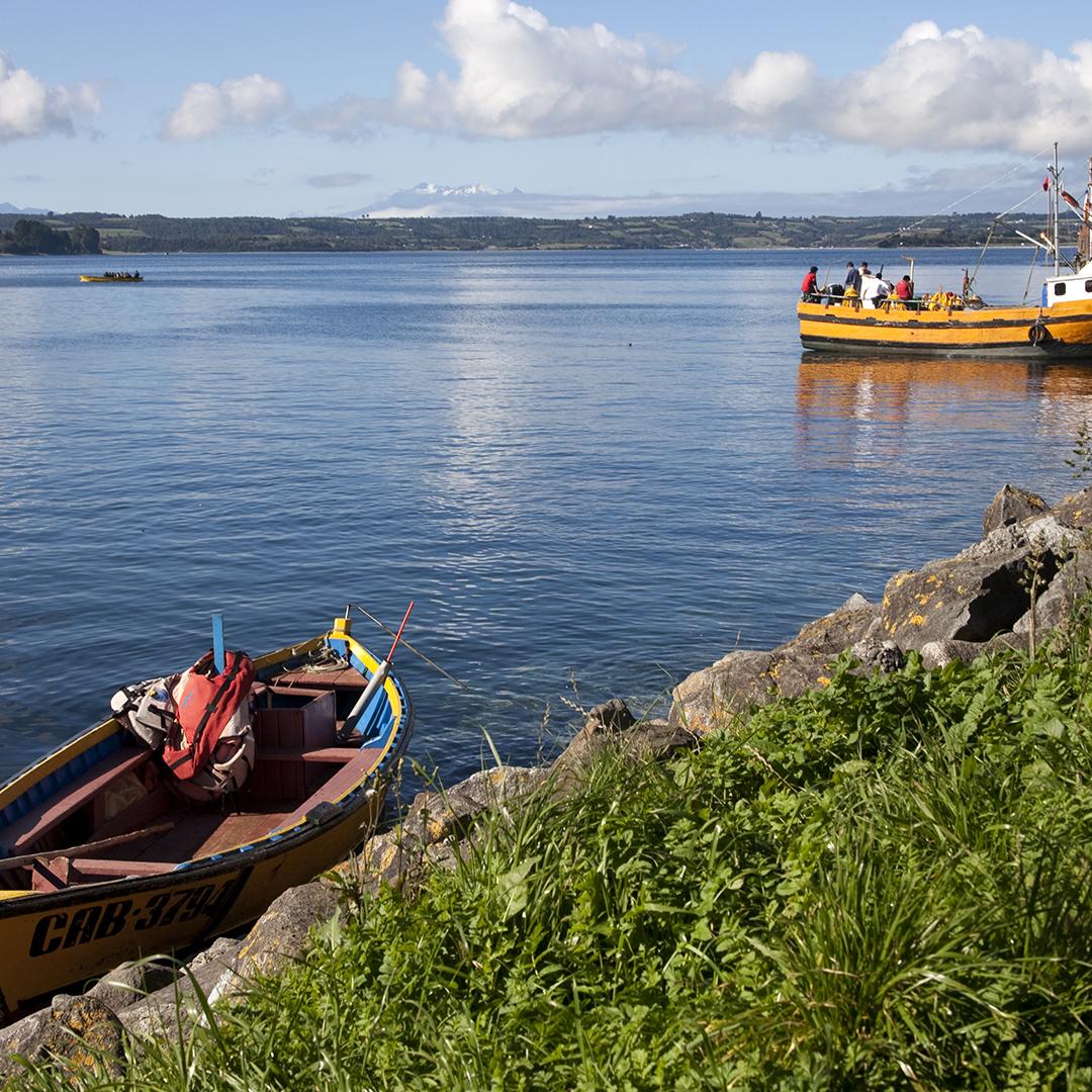Botes de pescadores en la bahía